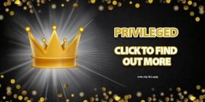 privileged vip promotion fortune frenzy